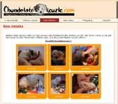 Náhled webu - Chundelatekouzlo.com